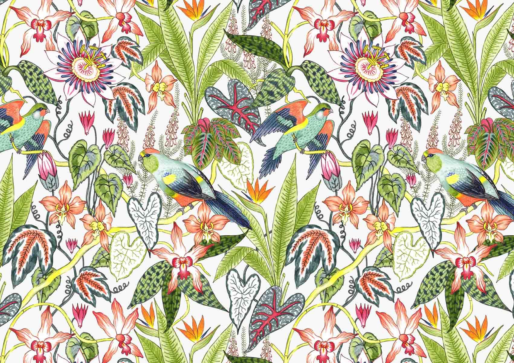 Derwent-Tropical-Pencil-set-Illustration-Pattern-Jacqueline-Colley-2.jpg