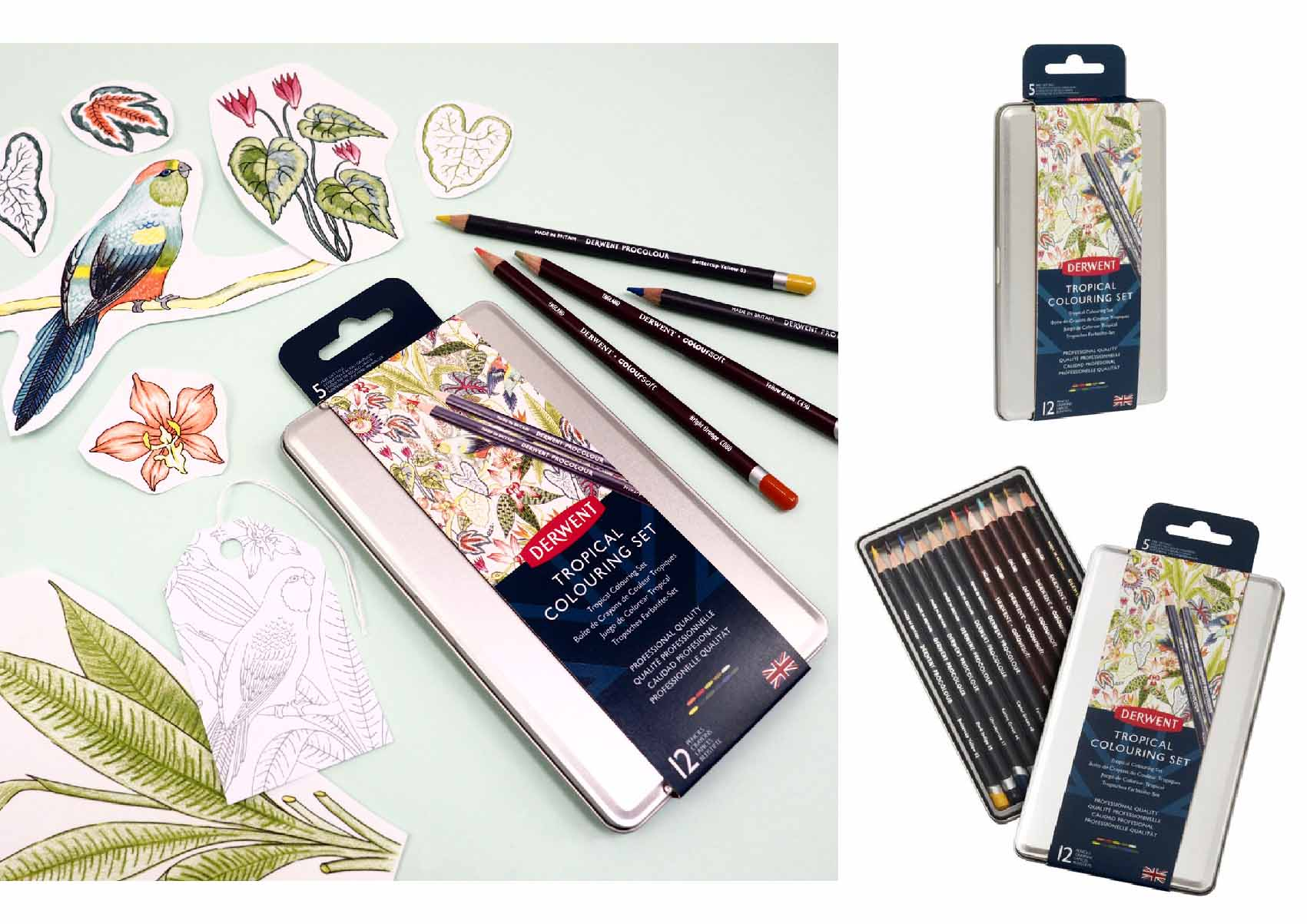 Derwent-Tropical-Pencil-set-Illustration-Pattern-Jacqueline-Colley-3.jpg