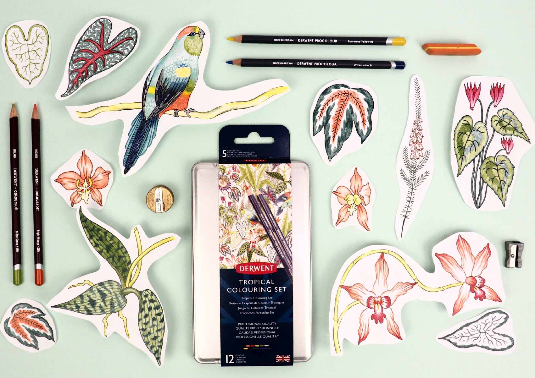 Derwent-Tropical-Pencil-set-Illustration-Pattern-Jacqueline-Colley-4.jpg