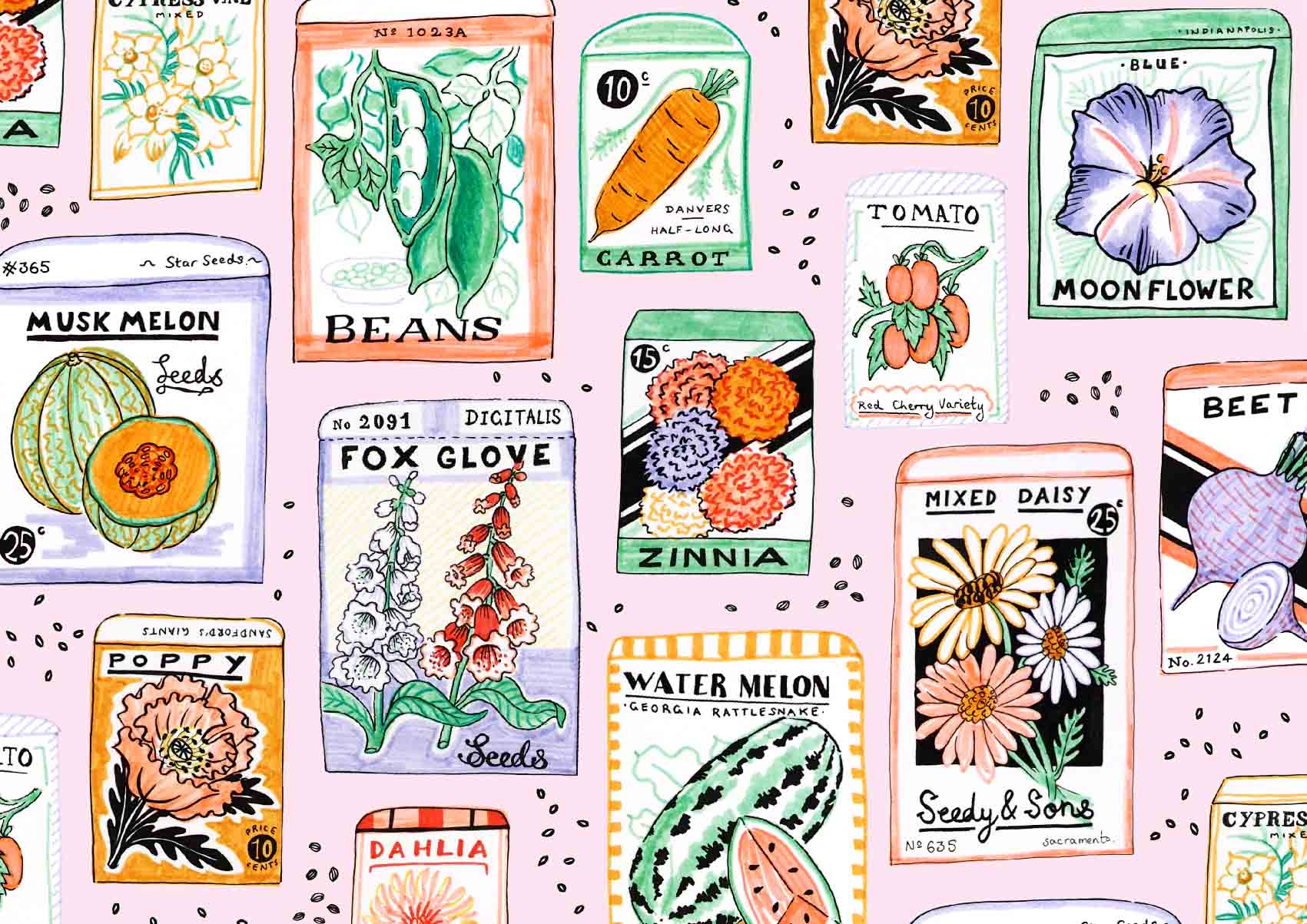 Seed-Packet-Collection-Illustrated-by-Jacqueline-Colley.jpg