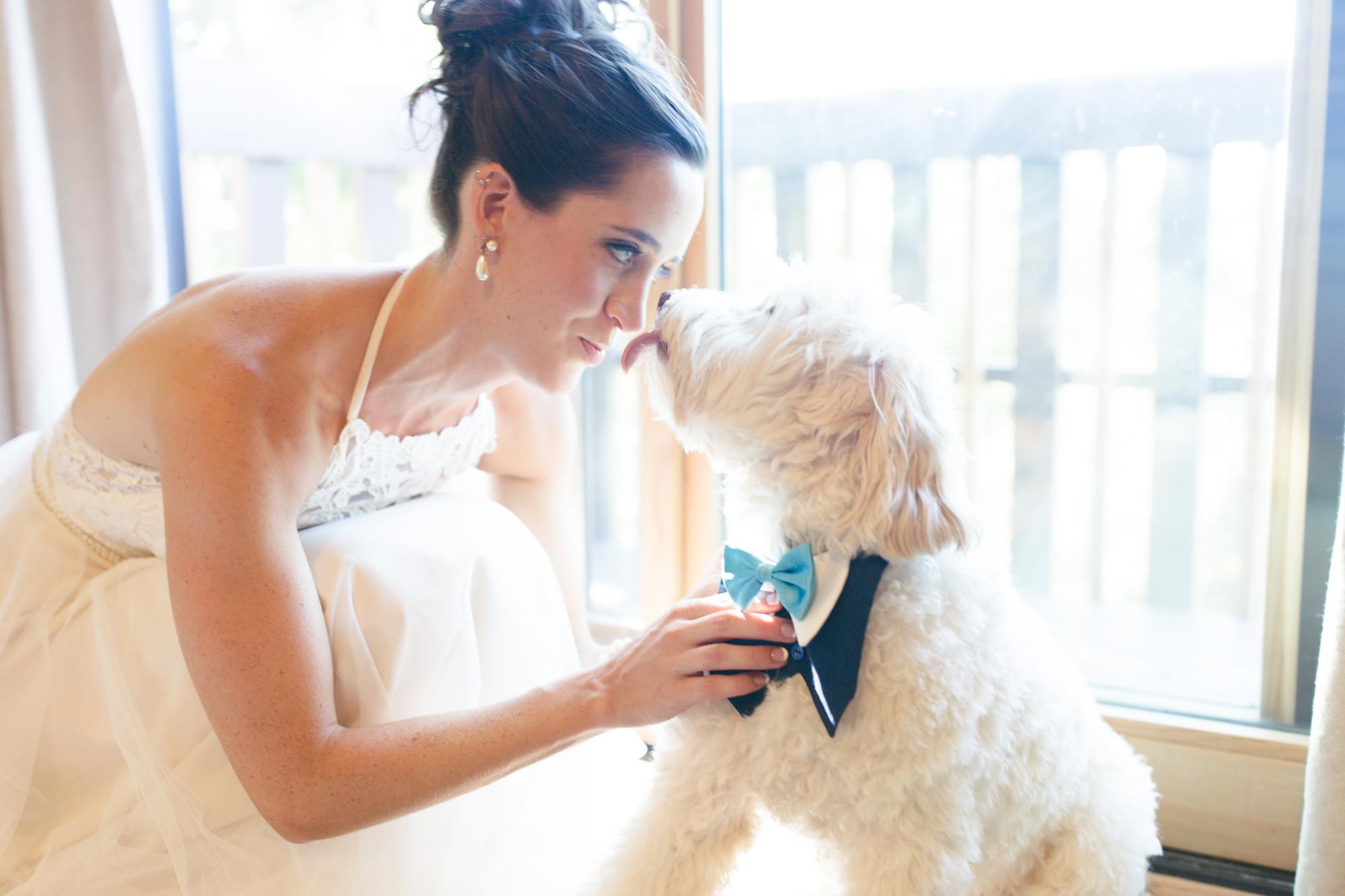 Wintergreen Resort Wedding | Maral Noori Photography | Charlottesville Virginia Wedding Photographer | Bride and Dog | Wedding Pets
