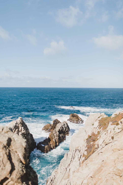 Point Lobos - Jan 2019 - online-8.jpg