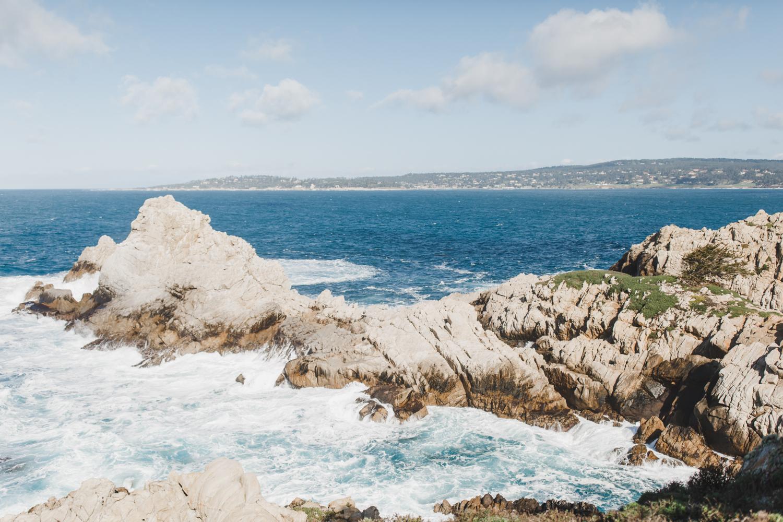 Point Lobos - Jan 2019 - online-11.jpg