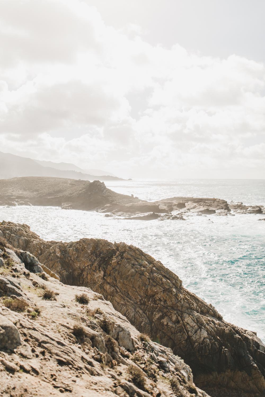 Point Lobos - Jan 2019 - online-6.jpg