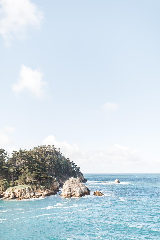 Point Lobos - Jan 2019 - online-35.jpg