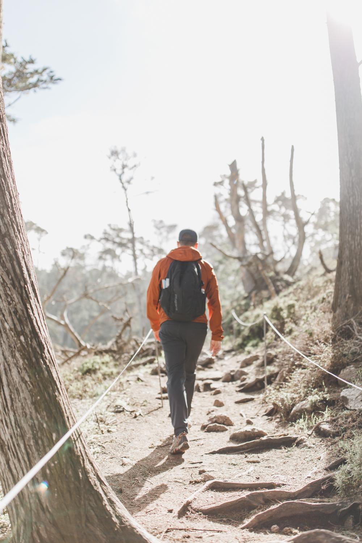 Point Lobos - Jan 2019 - online-32.jpg