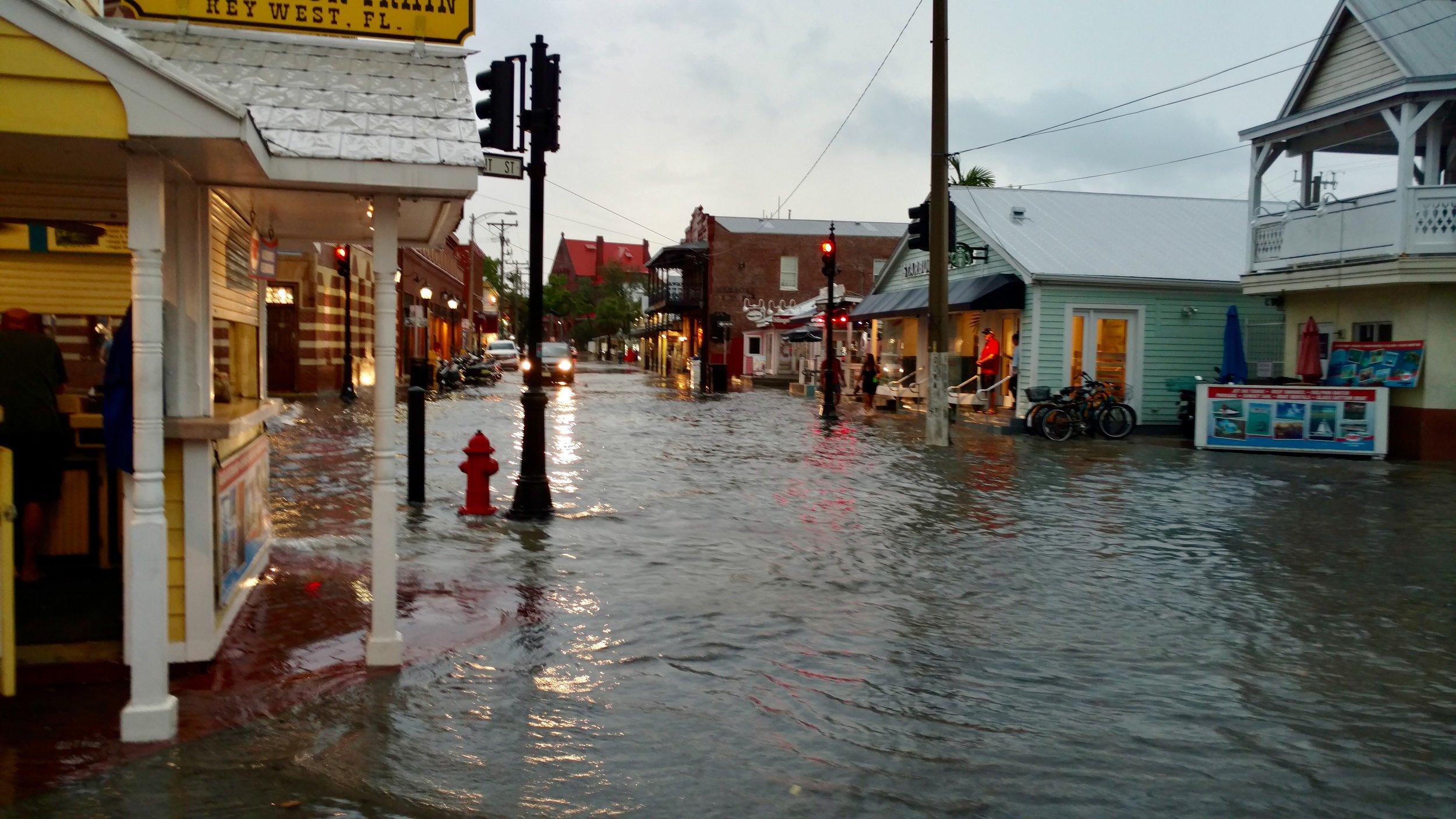 Really flooded.jpeg