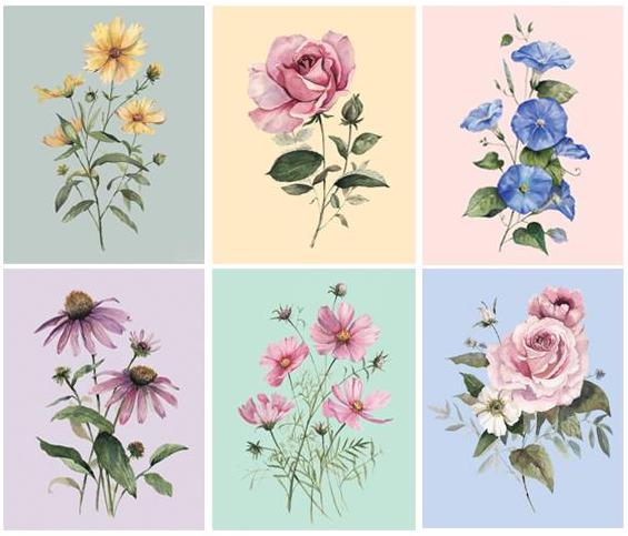 cami-monet-florals-boxed-greeting-card-set_1200x.jpg