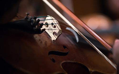 Contemporary bridge violin.jpg