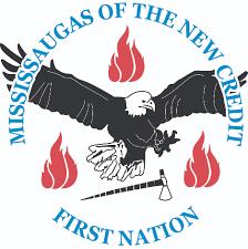 MNCFN logo.png
