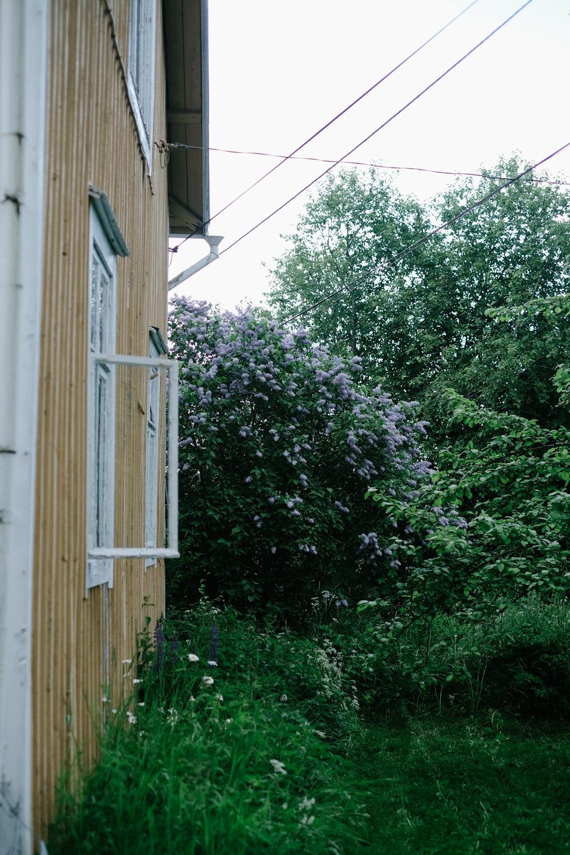 Torphage. Med taskig fasad, härlig syren alldeles vid husknuten och en rabatt som till 95 % består av ogräs. Inget för den som är åt det trädgårdspedanta hållet.
