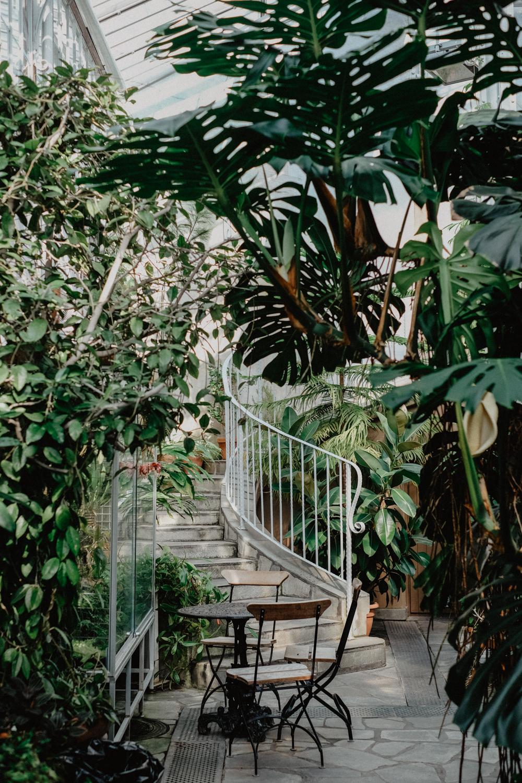 vinterträdgården-4.jpg