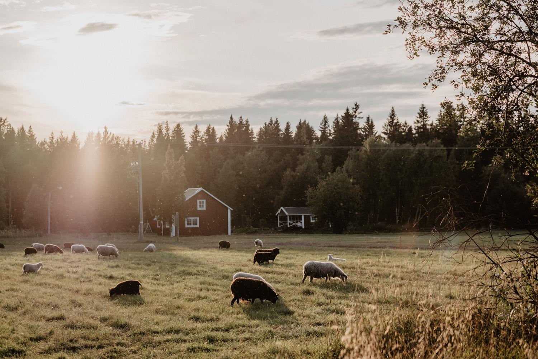 Prästgården Holmön (webb-format)-75.jpg