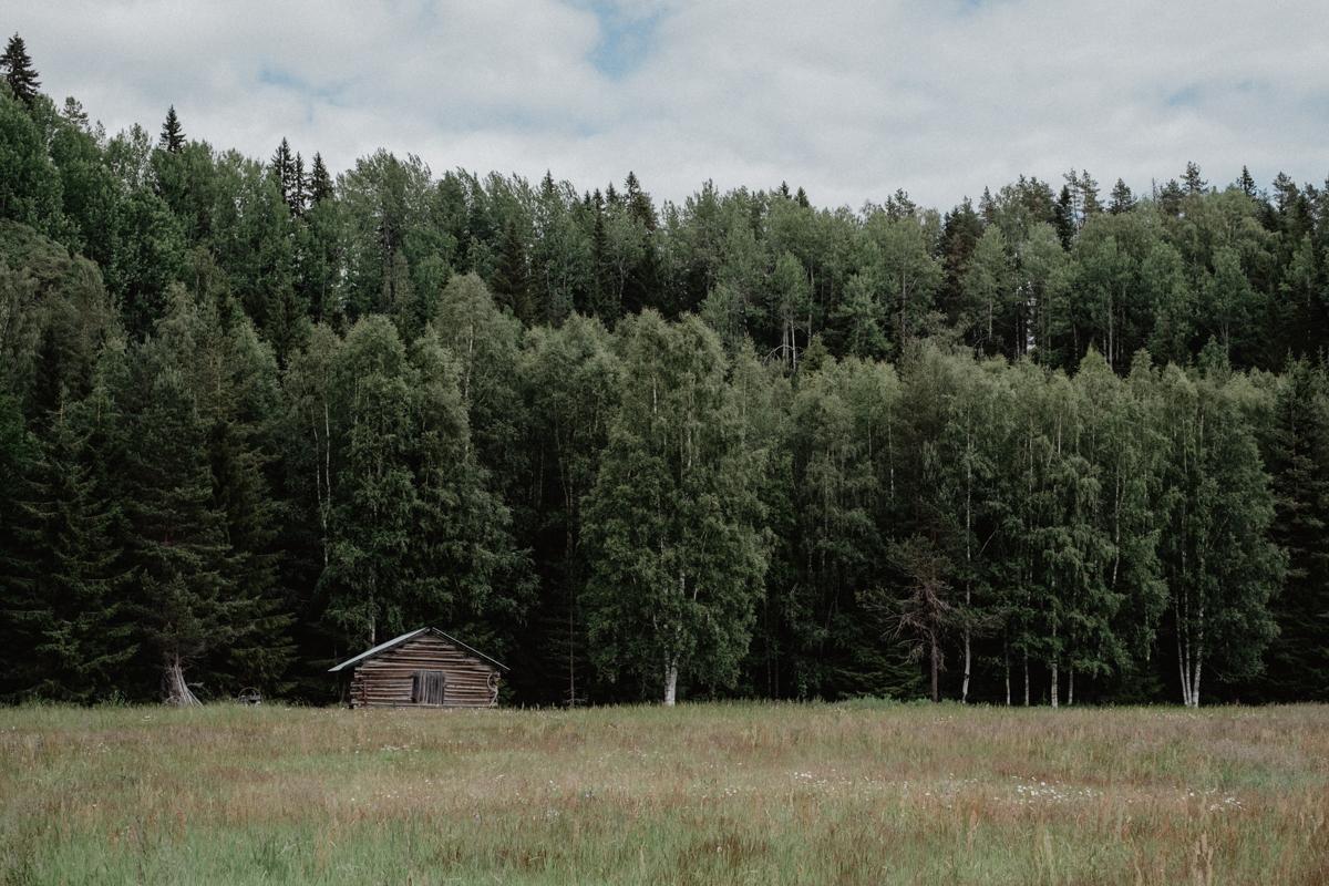 bröllopsfotograf umeå (Linn och Victor)-2756.jpg