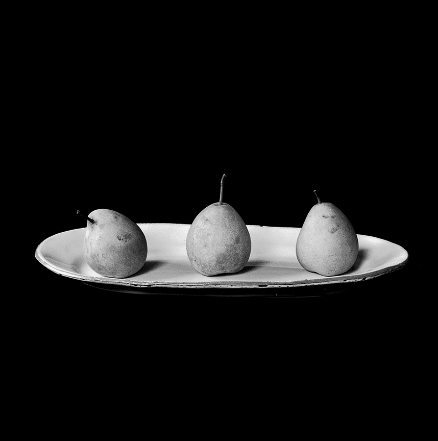 Barbara's Pears, West Tisbury, Massachusetts, 10 October 1999,  10:30 a.m.