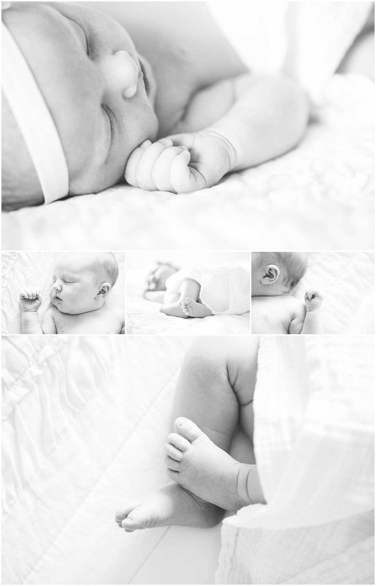 Autumn-105_Lizzie-B-Imagery-Utah-Family-Photographer-Central-Utah-Photographer-Utah-County-Newborn.jpg