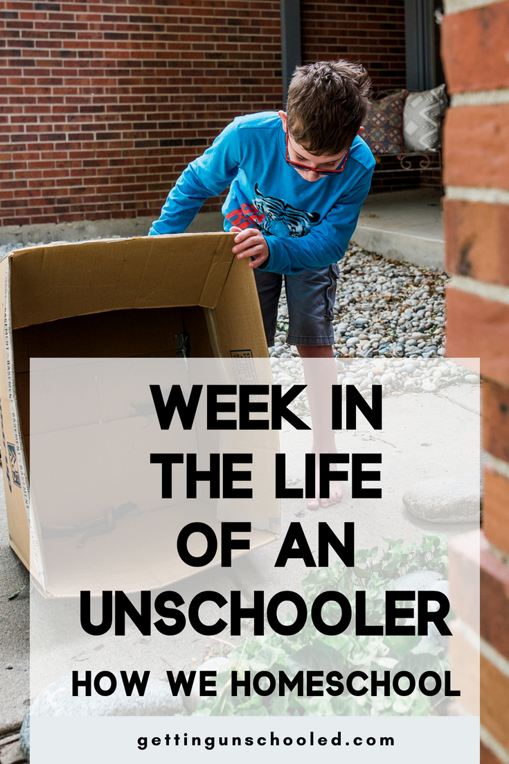 How we homeschool in the summer :)  Our latest week in the life of an unschooler is up on the blog...#11! :) #unschooling #homeschooling
