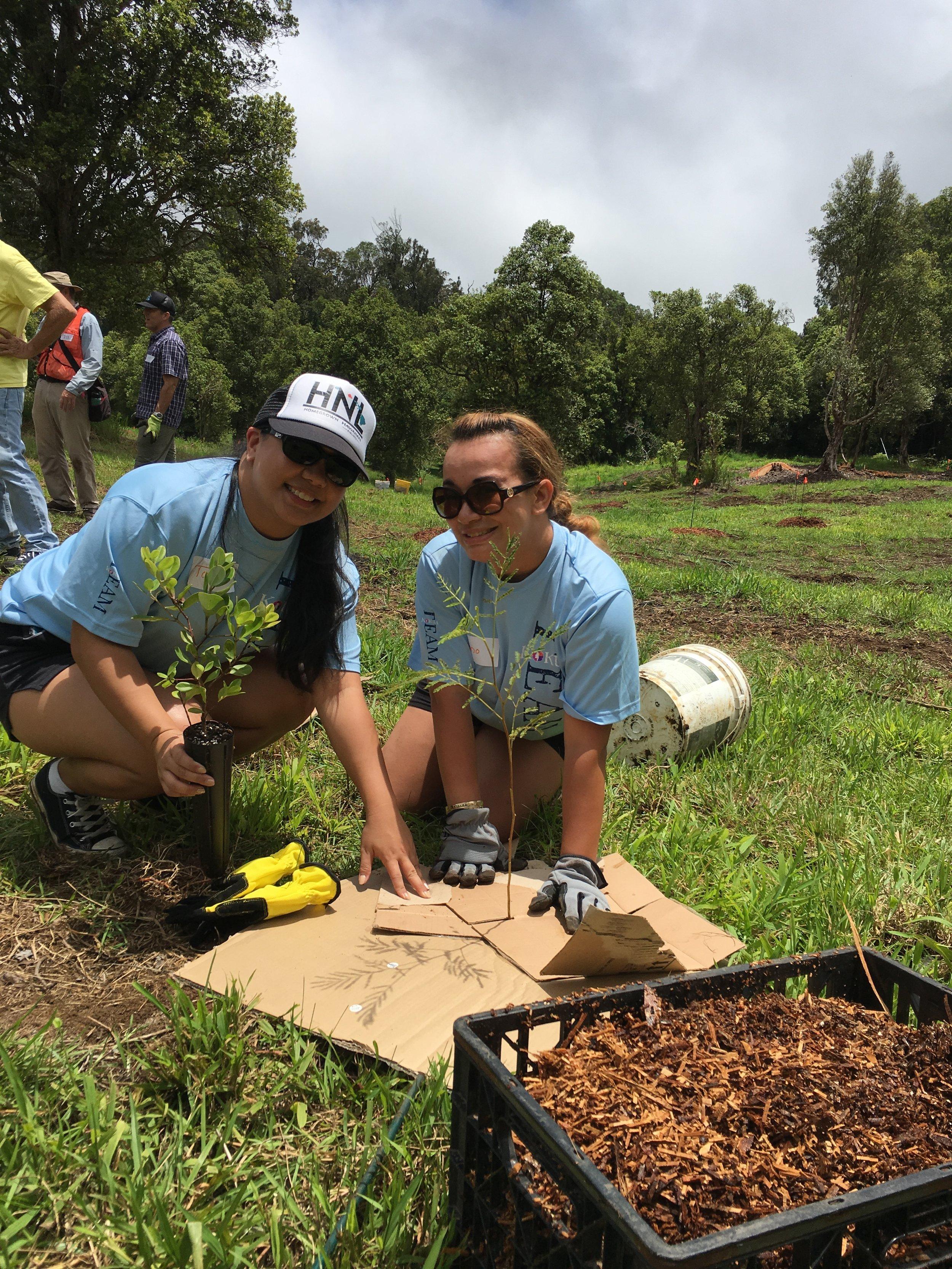 Hawaiian Airlines Team Kokua volunteers at our Lundburg easement on Hawai'i Island.  View their work here!