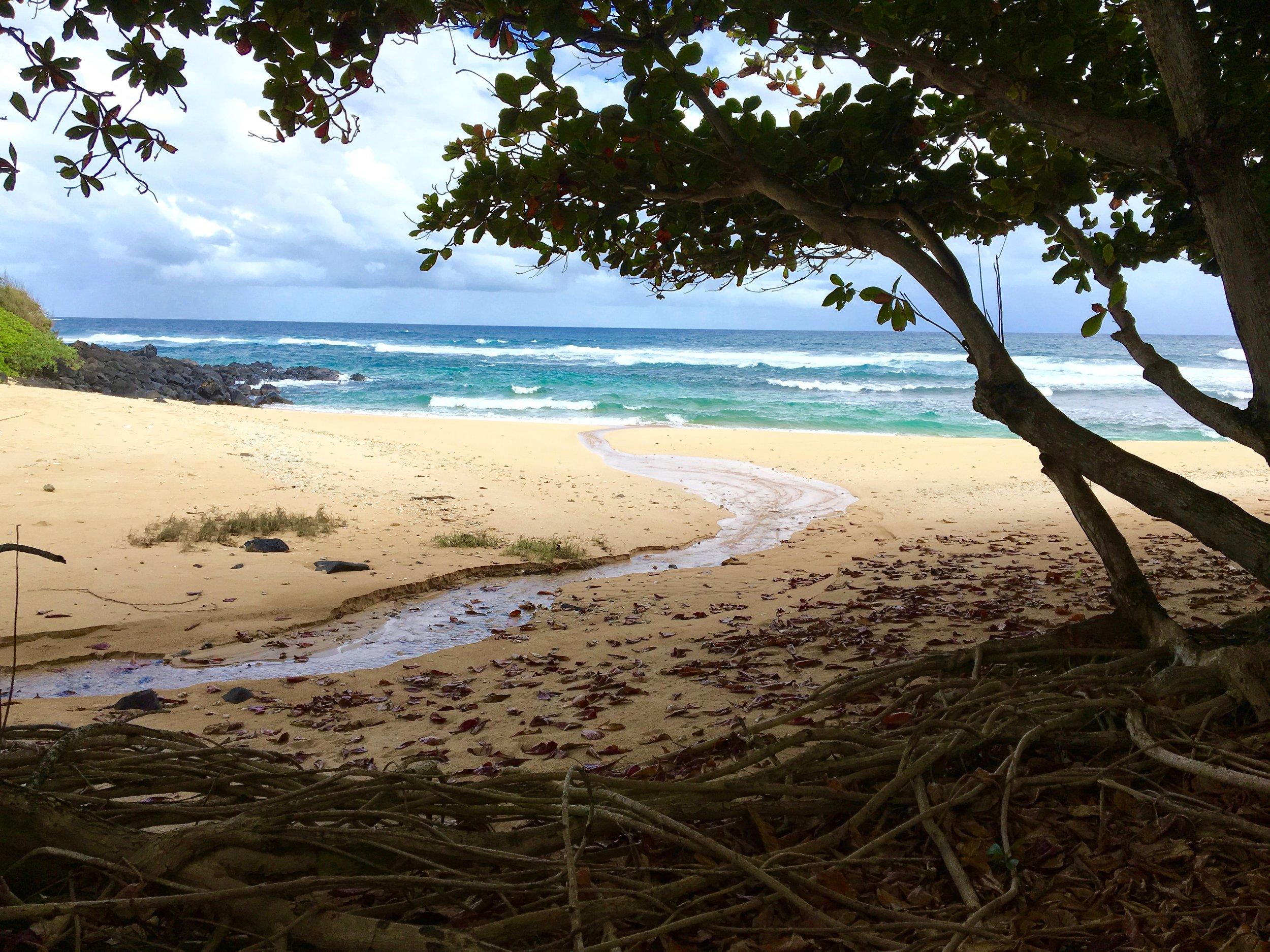 Kauai-Cvengros.jpg