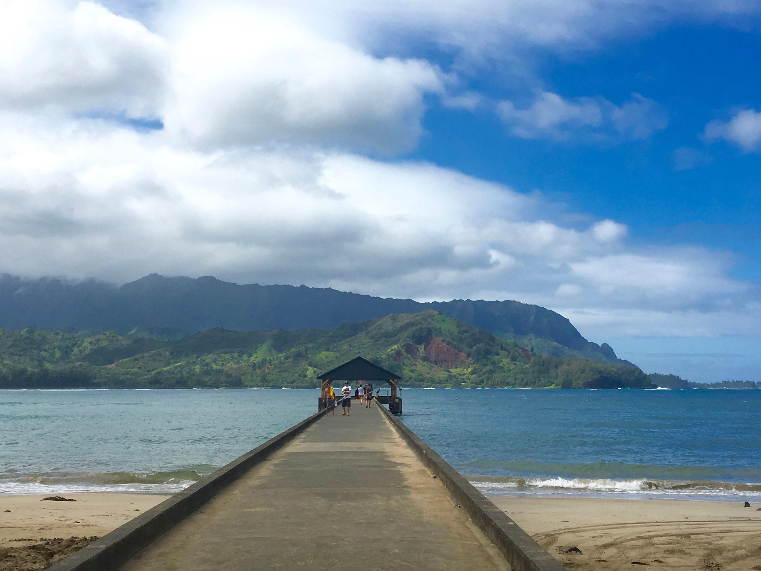 BROKERED-Kauai-BlackPot.jpg