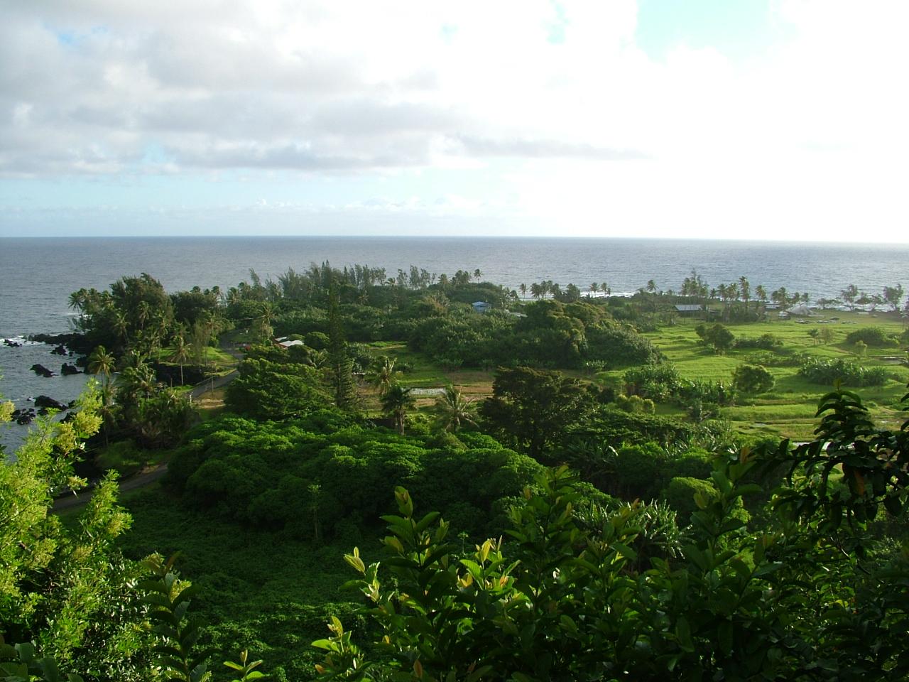 Keanae Loi, Maui