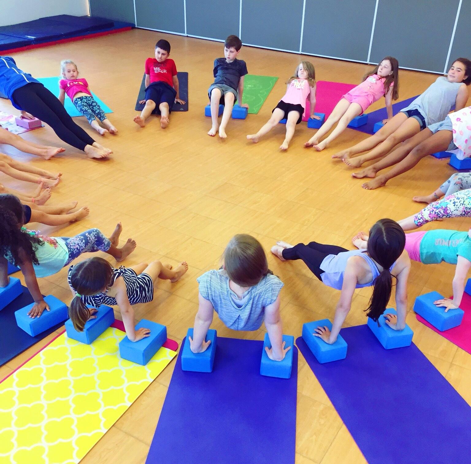 Reverse planks. On yoga blocks. Hello strong kids!
