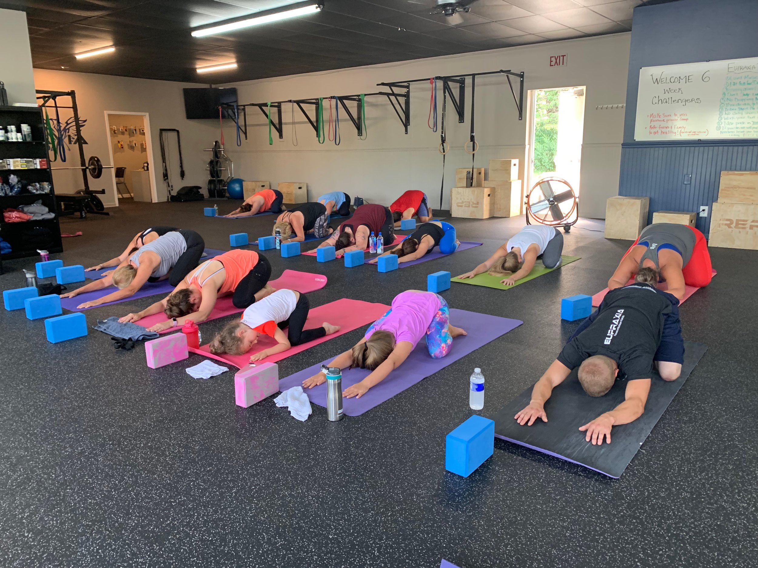 An awesome Adult-Level Yoga for Athletes class this weekend at Eupraxia Ontario. Everyone enjoyed a Restorative Yoga class to compliment their workouts — thank you to Eupraxia for hosting, to Susan for teaching, and to everyone who came!