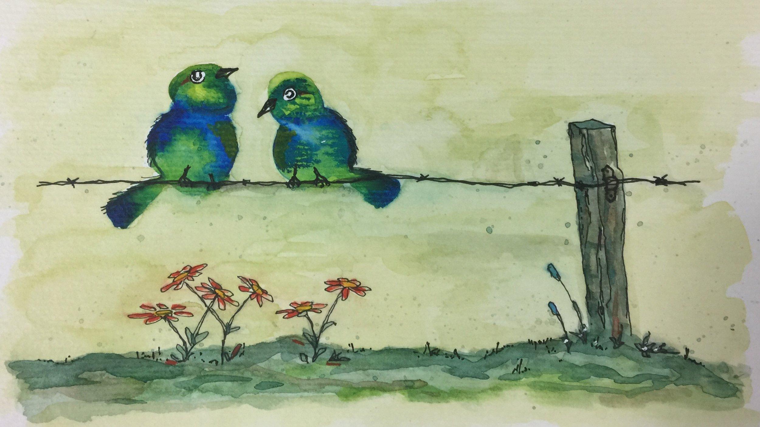 Birds on Barbed Wire.jpg