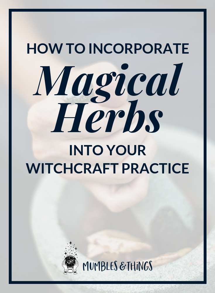 how to incorporate magical herbs into your witchcraft practice.png