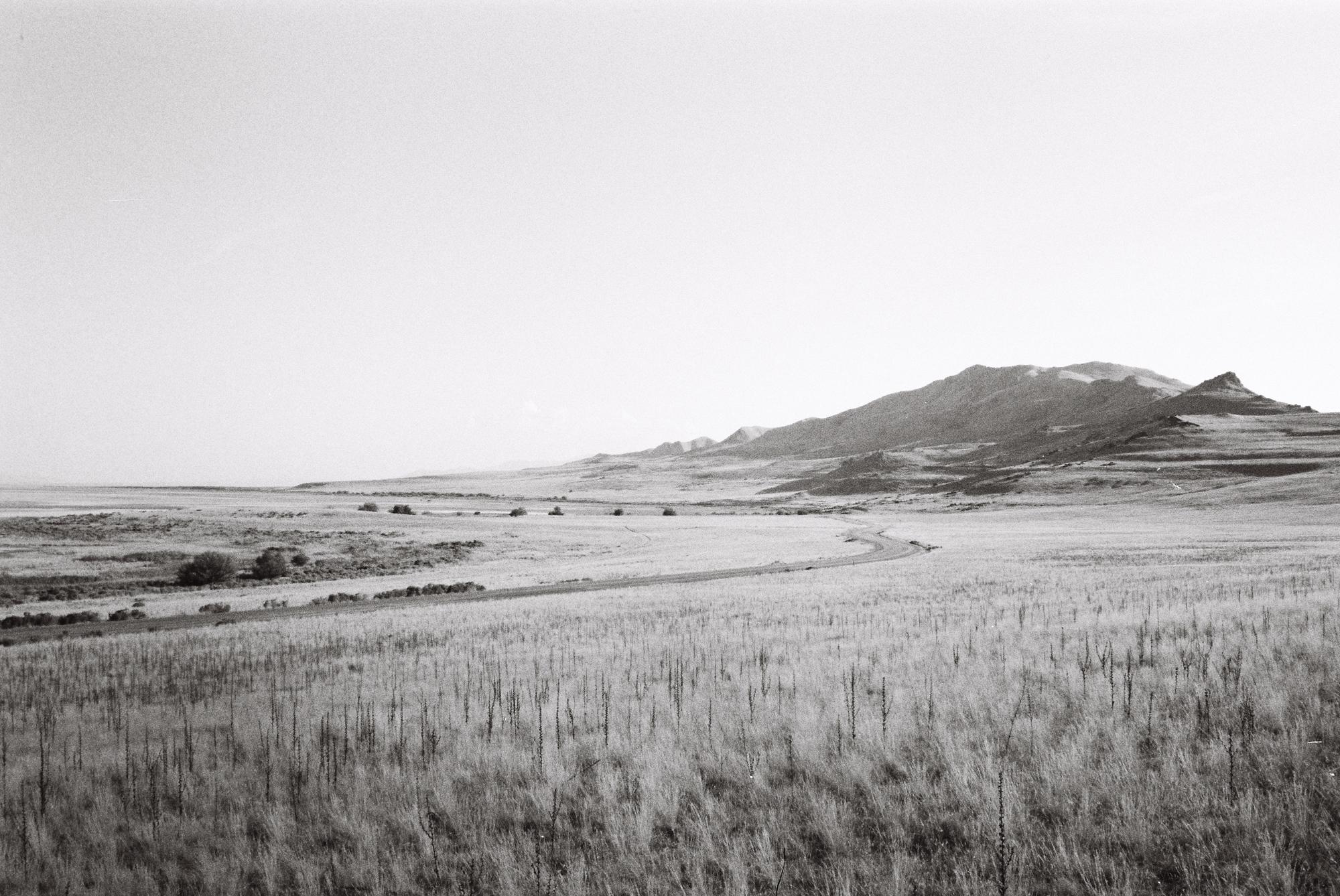 landscape-antelope-island.jpg