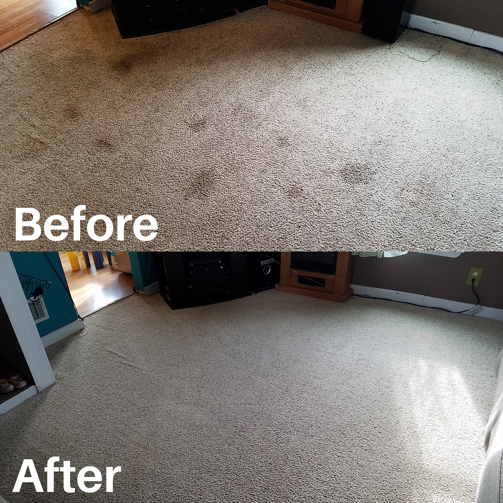dog spots - with before after.jpg
