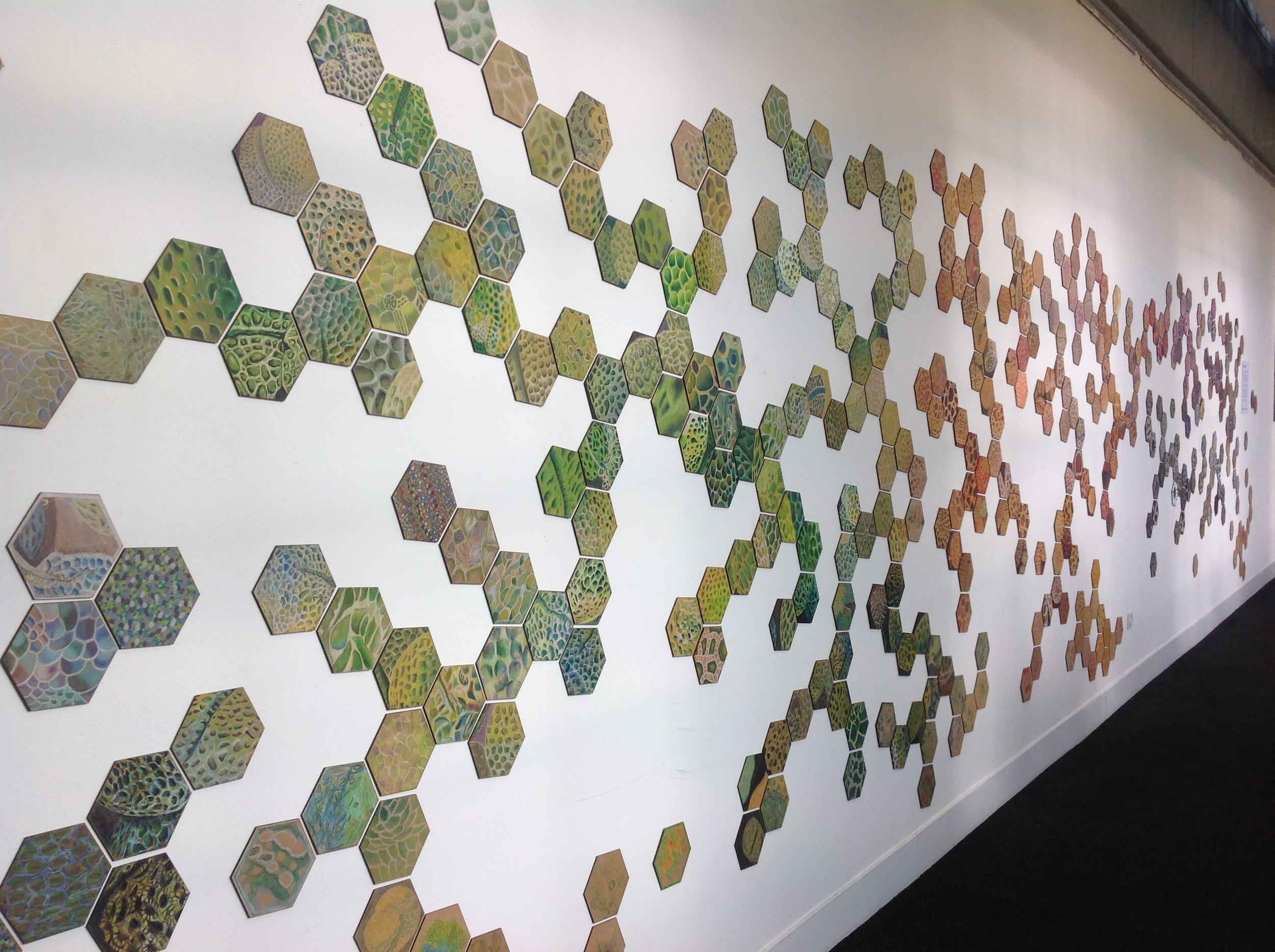 PolliNation - City Screen, YorkFebruary 8th - March 6th 2019