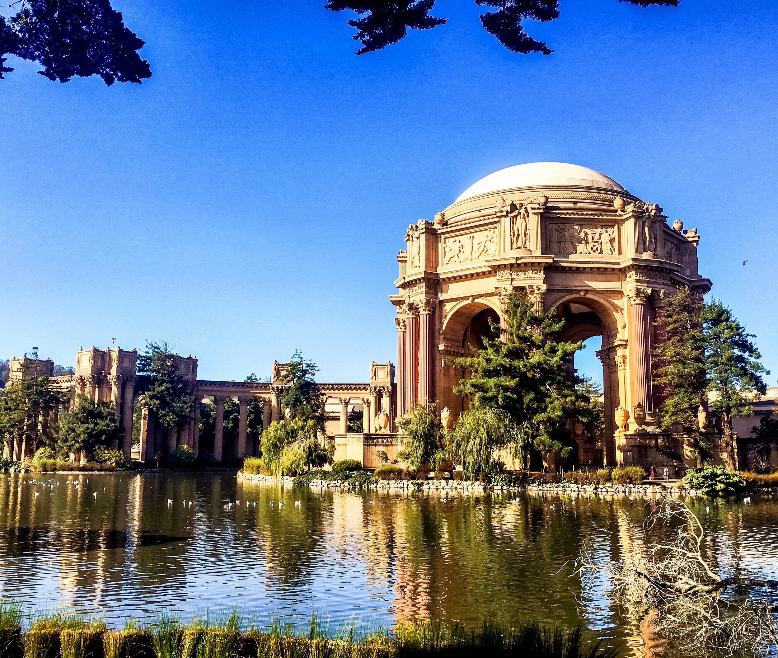 PALACE OF FINE ARTS - SAN FRANCISCO -USA