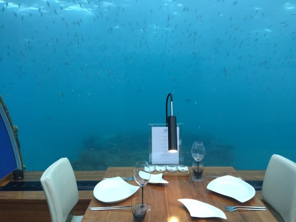 Zhu enjoyed the world-first undersea restaurant with his friends in Maldives.