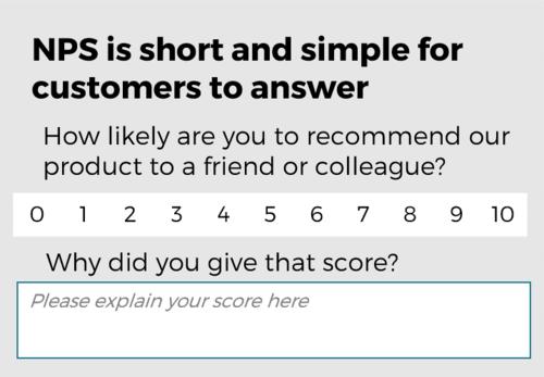How a NPS survey may look like.