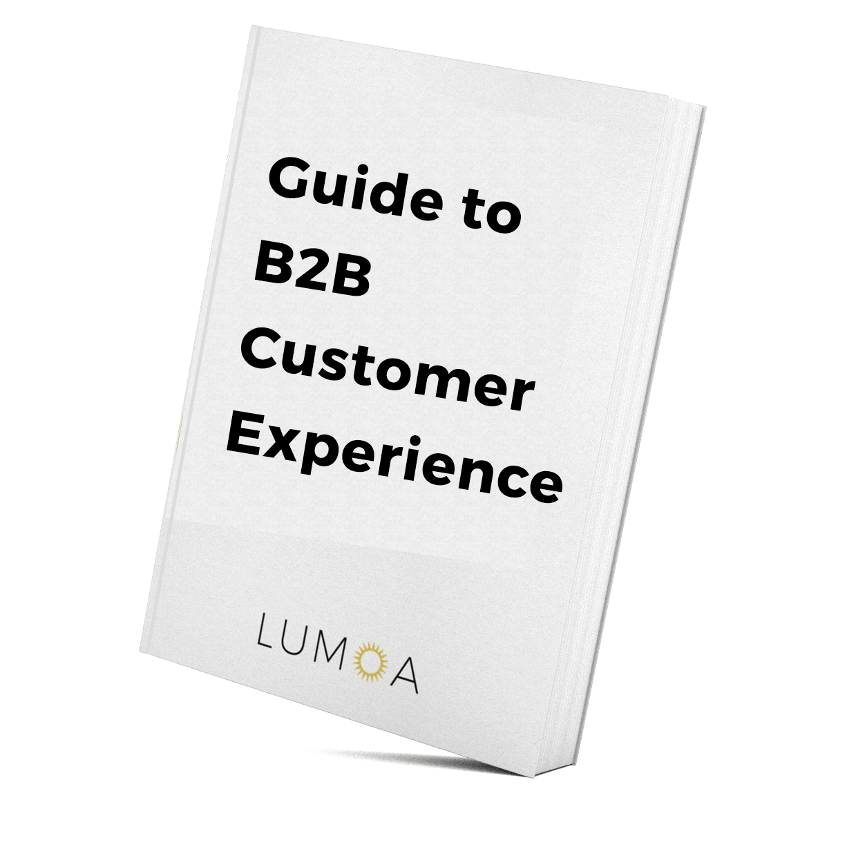 book_Guide to b2b customer experience.png