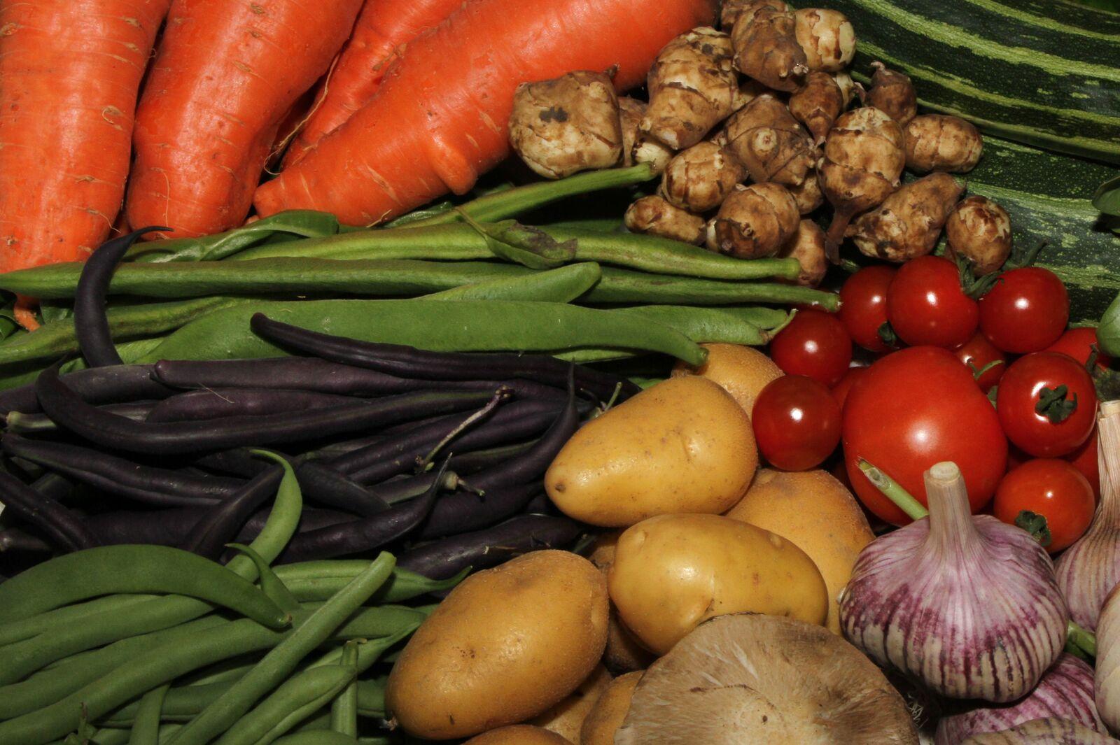 Homegrown veggies.