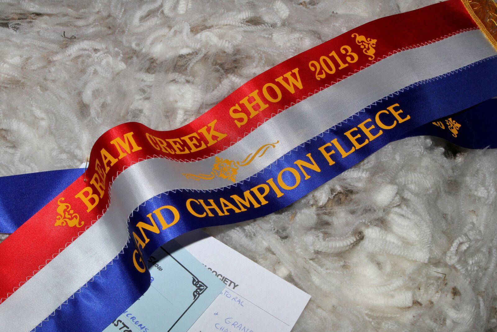 The winning fleece.