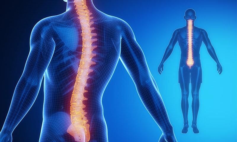 chiropractic-care-pa.jpg
