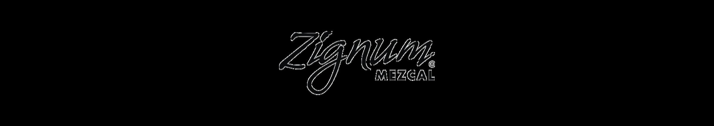 zignun_Banner_logo_web.png