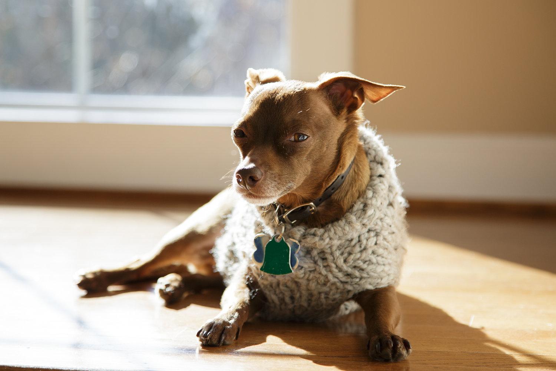 eli+sweater-1.jpg