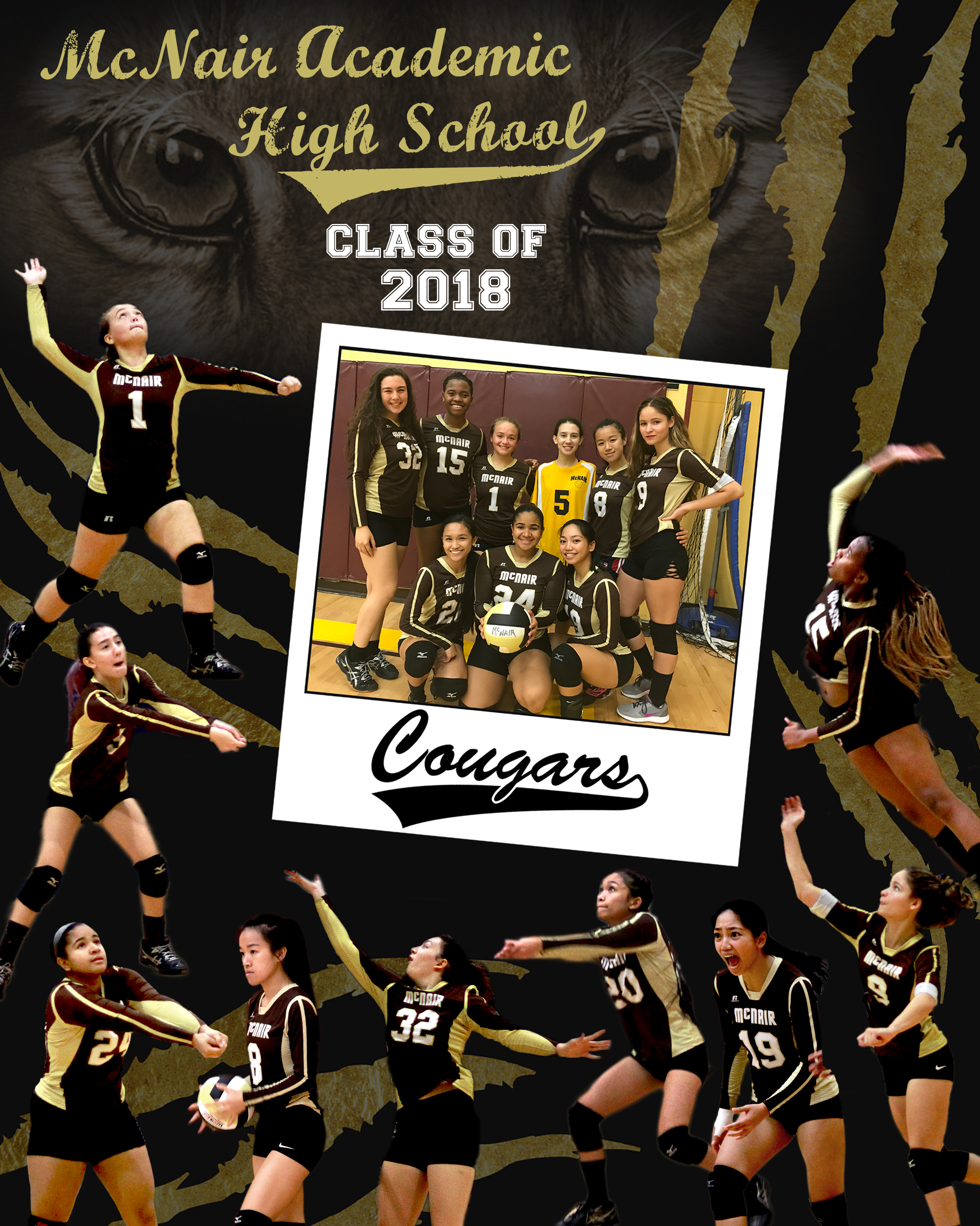 SENIOR VOLLEYBALL POSTER