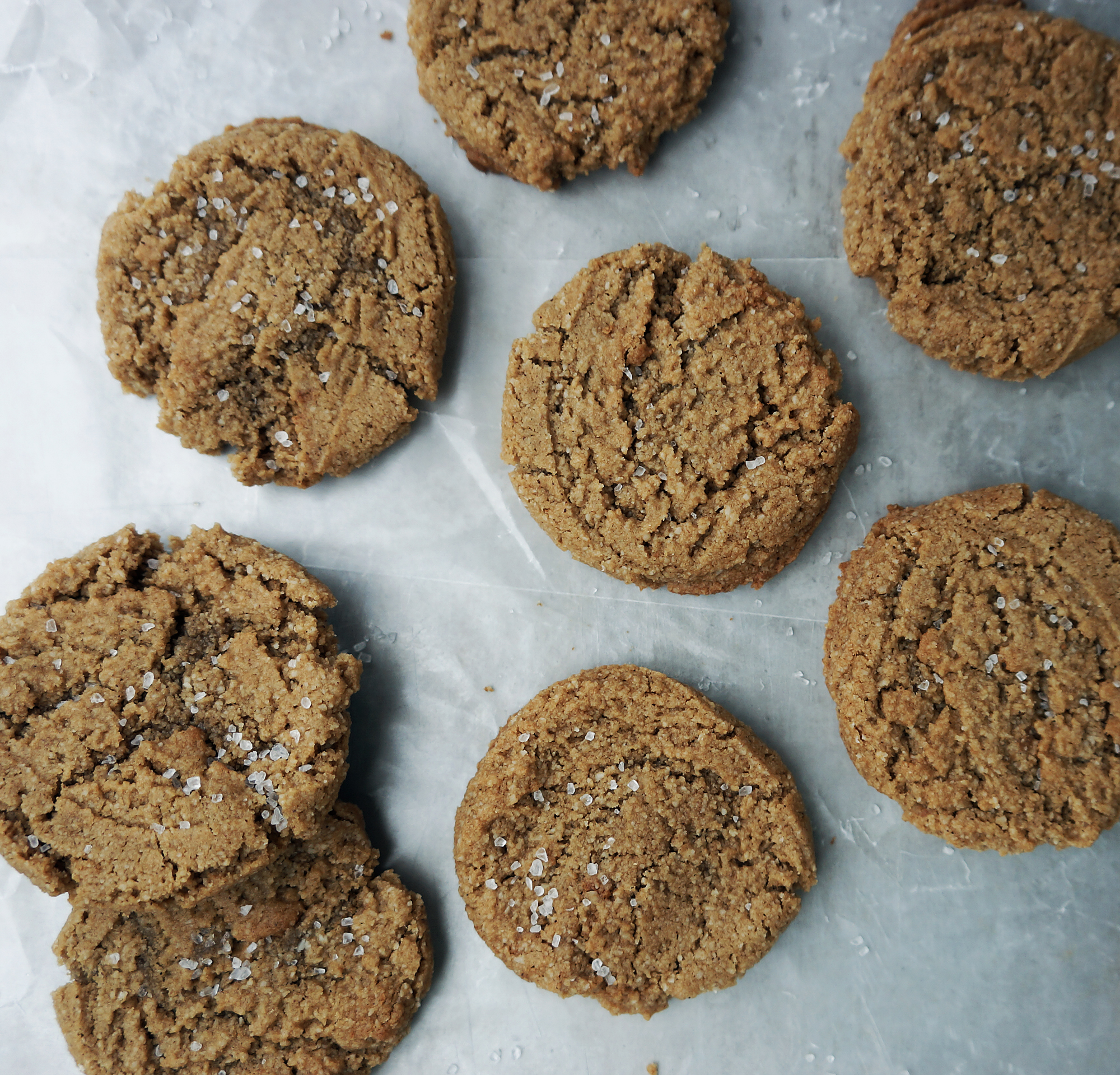 Fly Feet Running - Ginger Snap Cookies