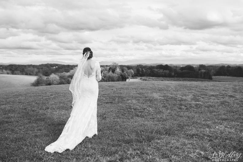 Black & White Wedding Portrait Vineyard