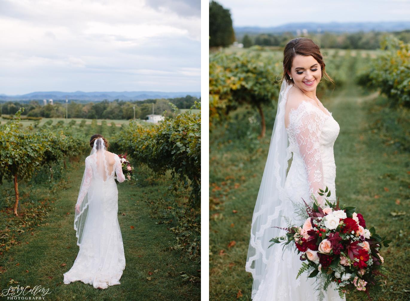 Bridal Fall Vineyard Mountain Wedding