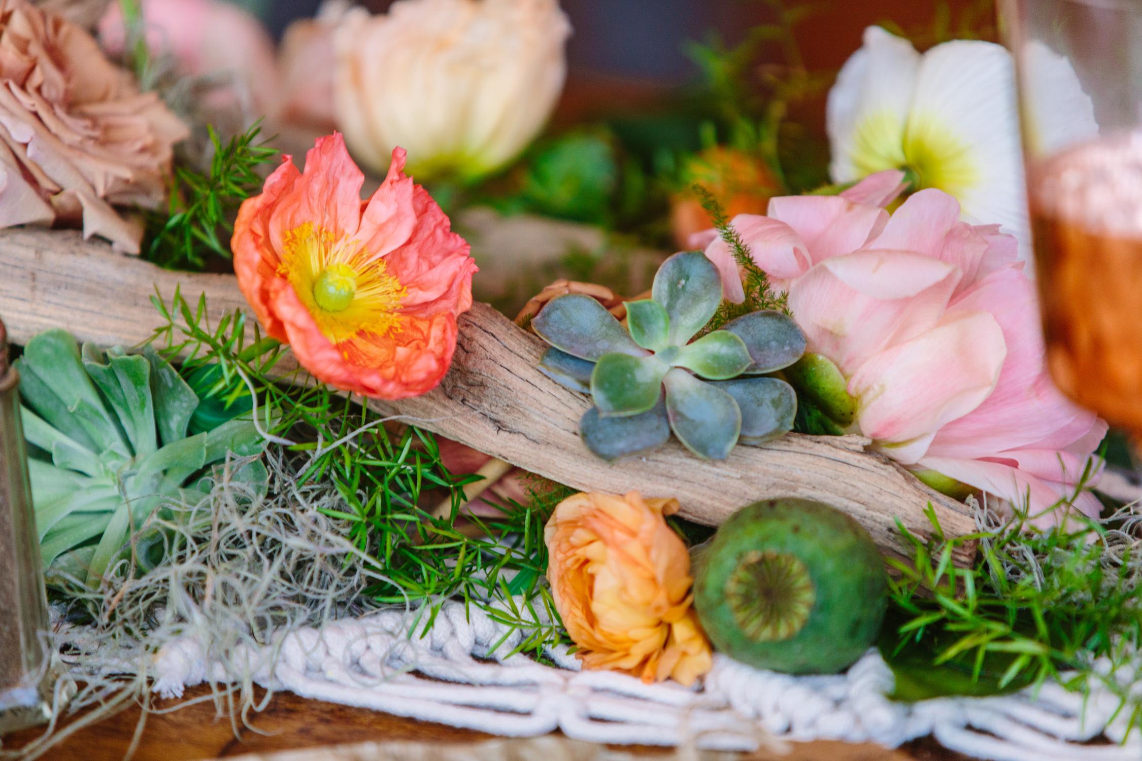 Knoxville Photographer Modern Bohemian Wedding Succulents