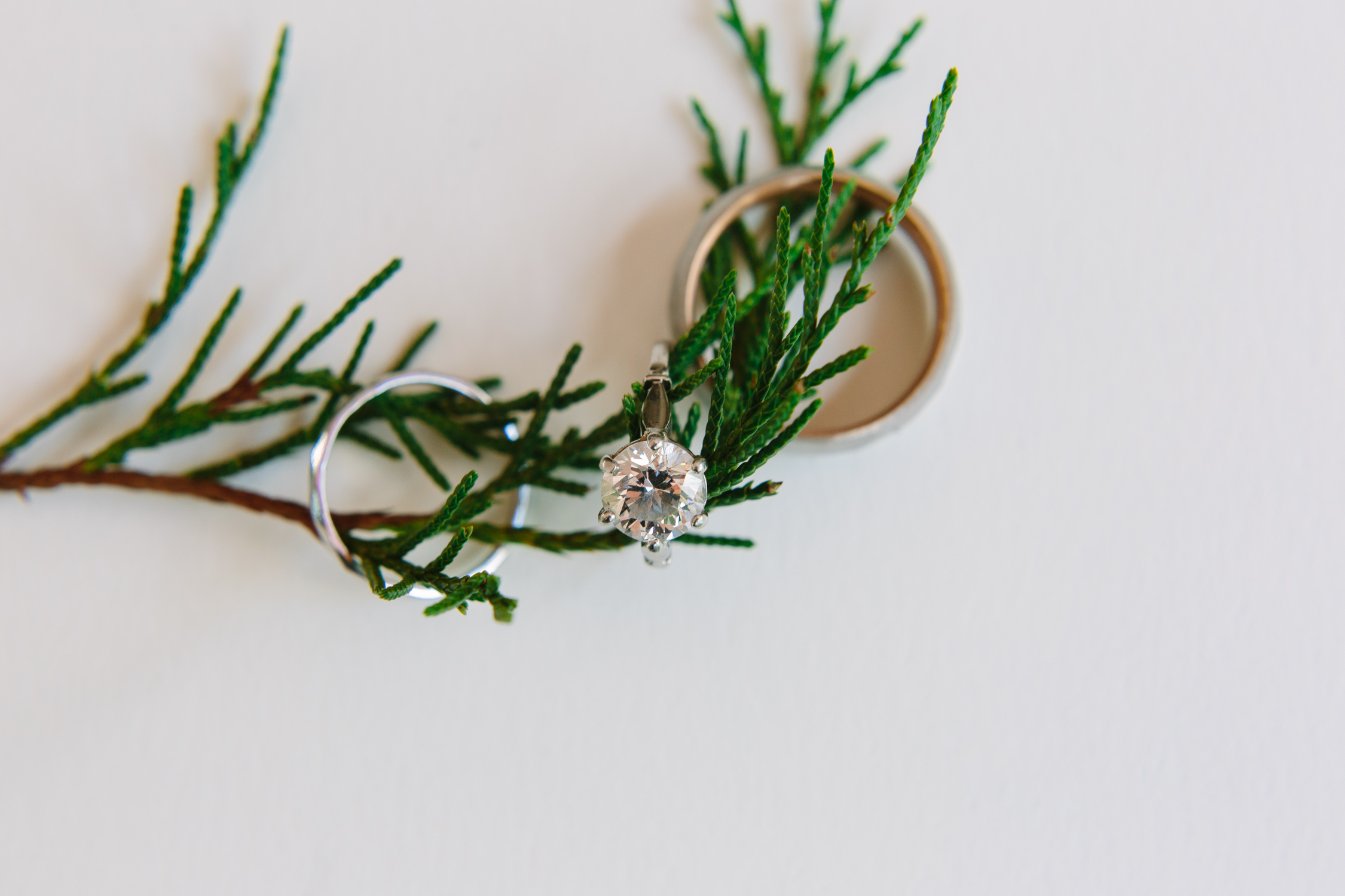 Wedding Rings // Tennessee Photographer // Suzy Collins Photography // The Olde Farm