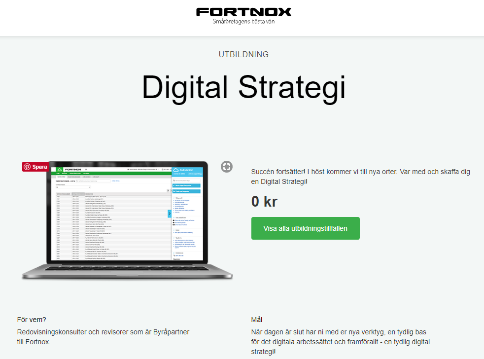 digitalstrategi.PNG
