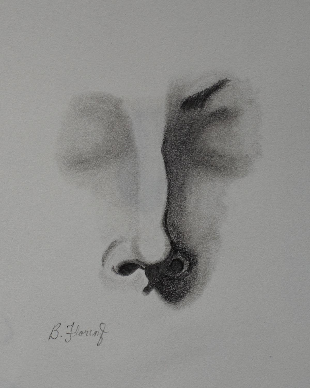 Nose study 1, pencil