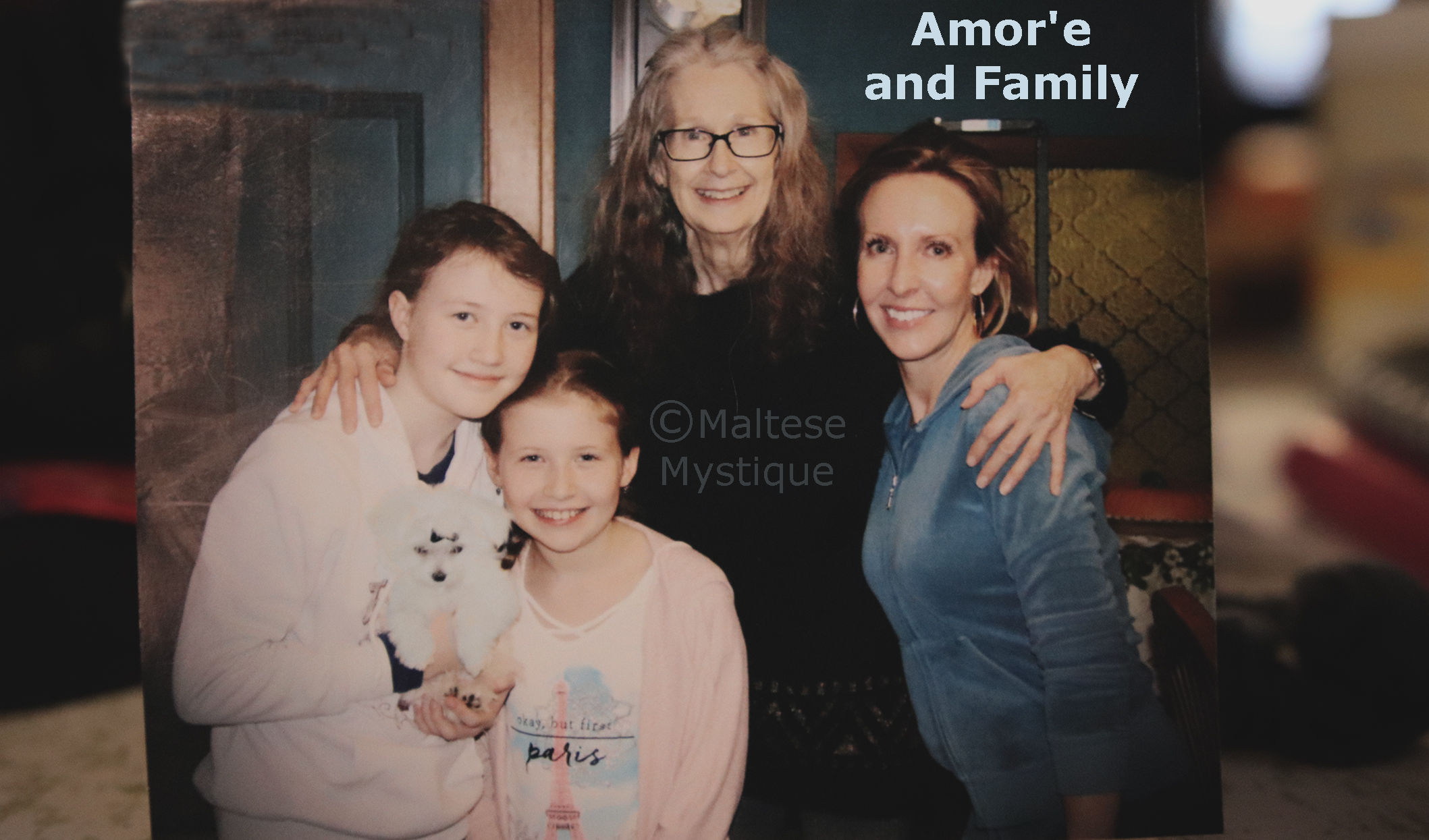 Amore and Family Plus 1.jpg